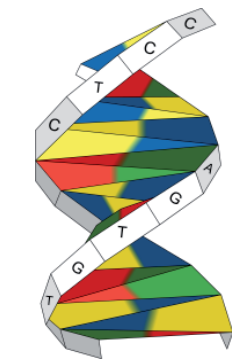 dna_origami
